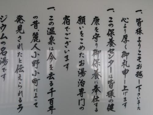 小野川温泉の効用_c0075701_21542189.jpg