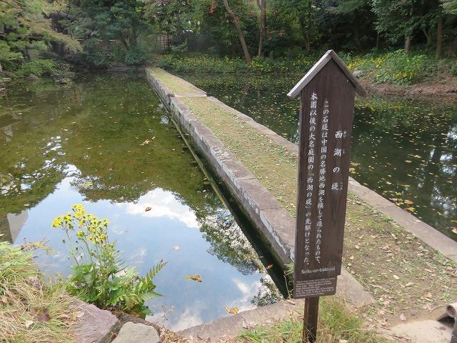 小石川後楽園②(新江戸百景めぐり57-2)_c0187004_18431432.jpg