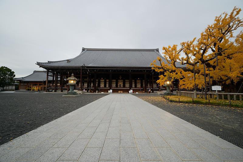 2019京都の紅葉・下京区 西本願寺_f0032011_19355063.jpg