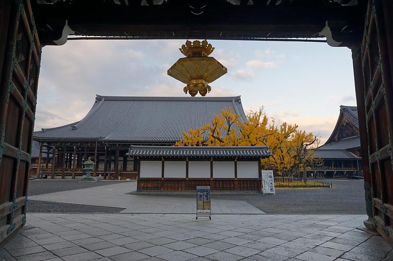 2019京都の紅葉・下京区 西本願寺_f0032011_19402640.jpg