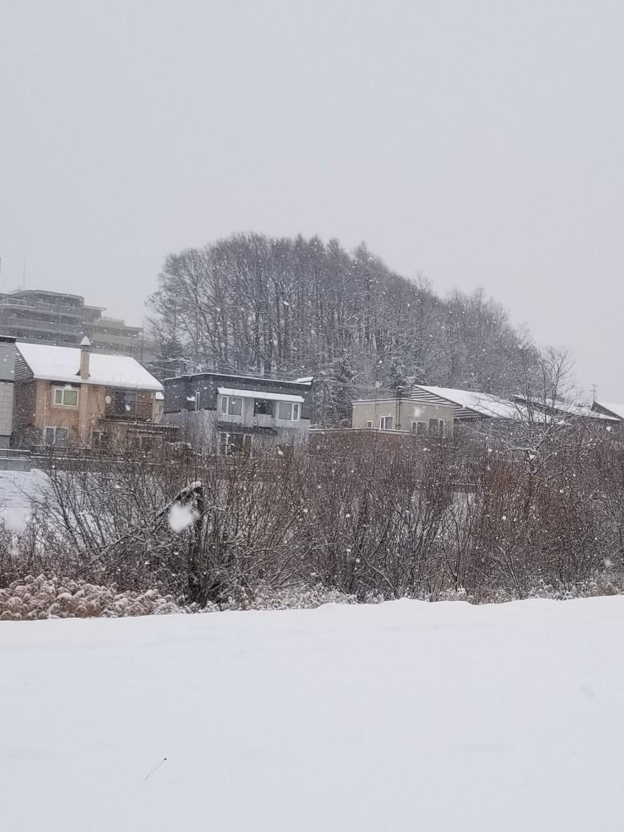 久しぶりの雪かき_b0019313_16494812.jpg