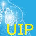 メタアナリシス:UIP・NSIPの放射線学的・臨床的特徴_e0156318_22381567.png