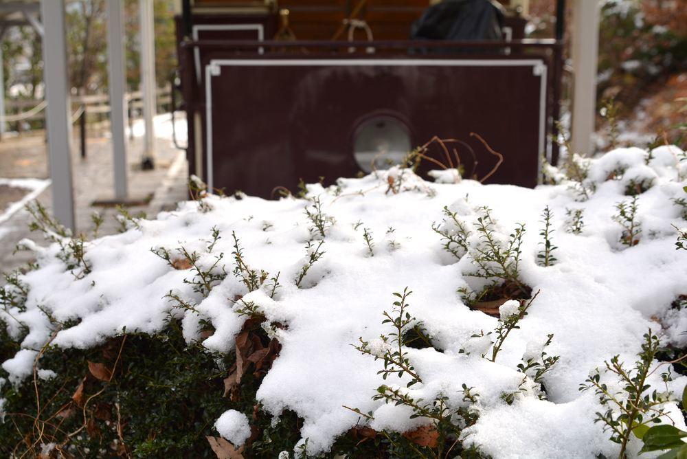 雪景色 2018年末 京都市電_e0373930_20070350.jpg