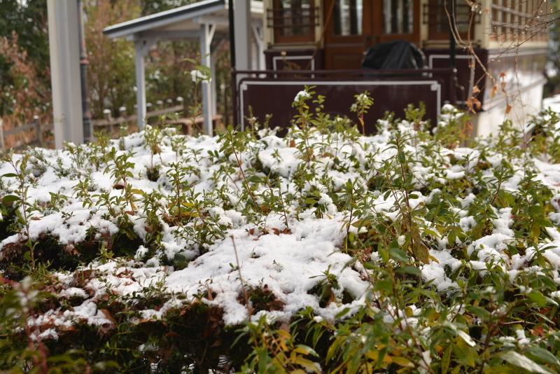 雪景色 2018年末 京都市電_e0373930_20070408.jpg
