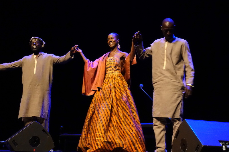 Rokia Traore at Philharmonie de Paris 2020_d0010432_18195856.jpg