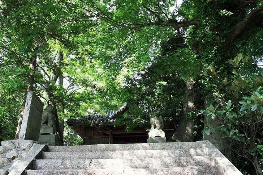 美馬市穴吹町「十二所神社」♪_d0058941_20202532.jpg