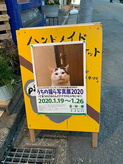 うちの猫ら写真展2020_a0028451_12474268.jpg