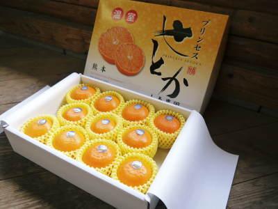 究極の柑橘「せとか」 令和2年も出荷は2月中旬より!収穫まで1ヶ月前の様子を現地取材(後編)_a0254656_16355462.jpg