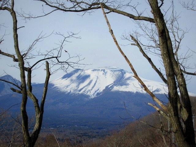 暖かい大寒の日 * 浅間山の冠雪と軽井沢駅からのプリンススキー場_f0236260_18375462.jpg
