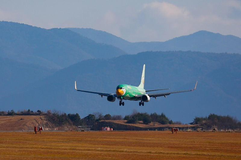 緑の鳥。_c0347168_17543243.jpg