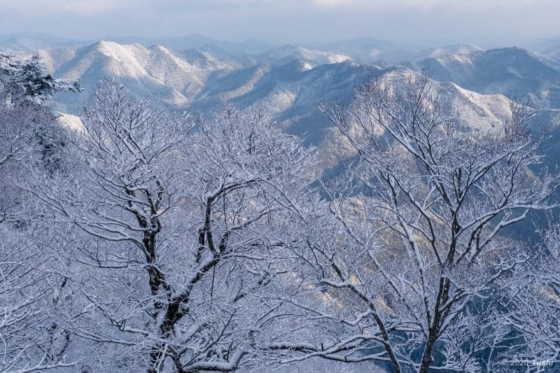 野迫川 樹氷_c0350572_21162010.jpg