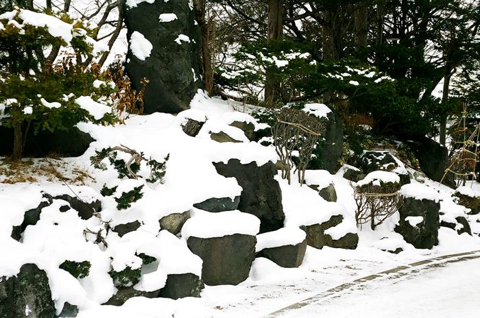大照寺の地蔵・北五葉松・庭石の雪となだ万雅殿_c0182775_16454214.jpg