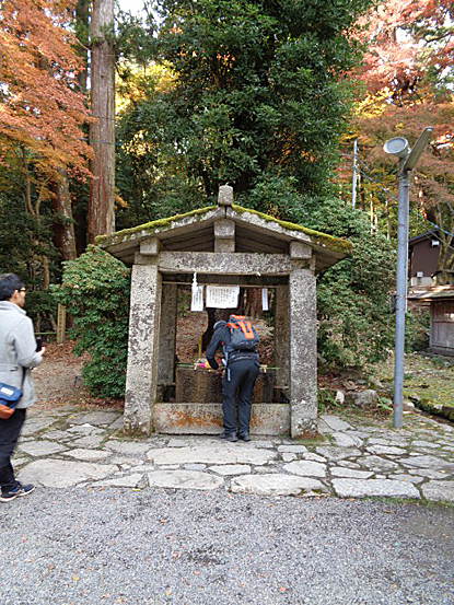 日吉神社_e0066586_07295544.jpg