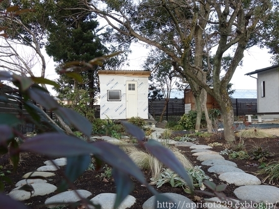 冬の庭しごと ガーデンシェッドの窓の取りつけ_c0293787_14144850.jpg
