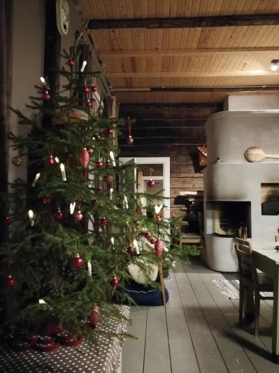 2019年のクリスマス 思ったより簡単だった豚ハム_d0090294_16583206.jpg