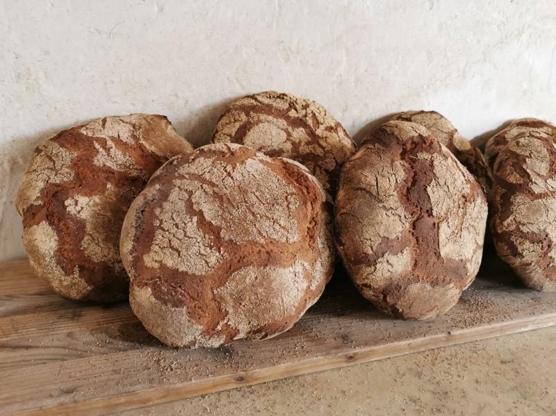 皆でパンを焼く会_f0106597_04025911.jpg