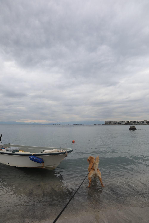 初めての葉山の海♪_b0275998_08511558.jpg