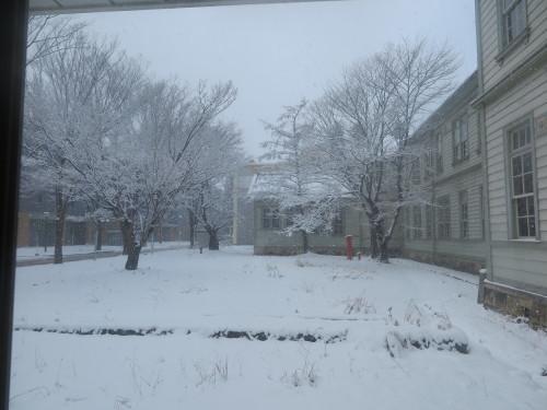 重文本館からの雪景色 2020.1.21 午前_c0075701_14080003.jpg