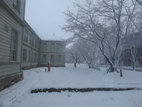 重文本館からの雪景色 2020.1.21 午前_c0075701_14080391.jpg