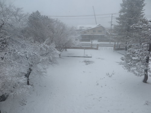重文本館からの雪景色 2020.1.21 午前_c0075701_14081393.jpg