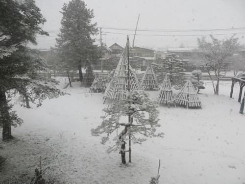 重文本館からの雪景色 2020.1.21 午前_c0075701_14083124.jpg