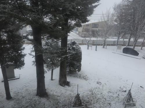 重文本館からの雪景色 2020.1.21 午前_c0075701_14085404.jpg