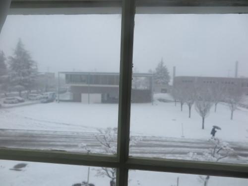 重文本館からの雪景色 2020.1.21 午前_c0075701_14085803.jpg