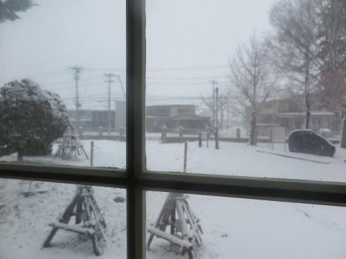 重文本館からの雪景色 2020.1.21 午前_c0075701_14090489.jpg