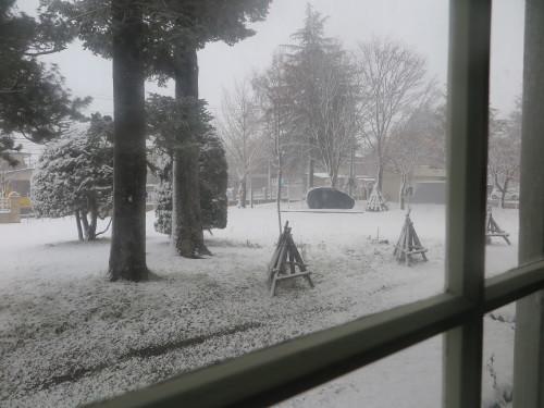 重文本館からの雪景色 2020.1.21 午前_c0075701_14091113.jpg