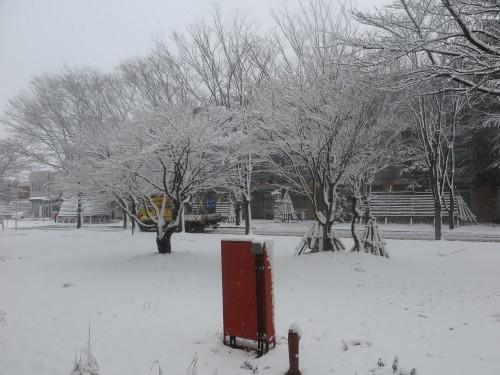 重文本館からの雪景色 2020.1.21 午前_c0075701_14092339.jpg