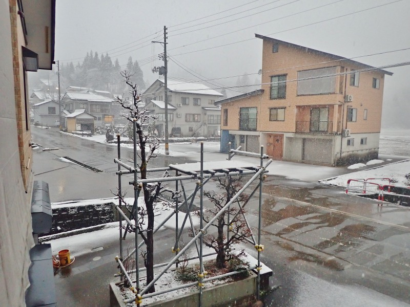 久し振りに雪が・・・_c0336902_20324679.jpg