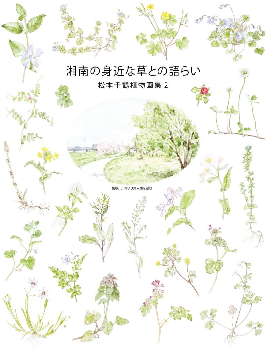 2月の新刊 3 松本千鶴植物画集を刊行します。_d0045404_10543800.jpg