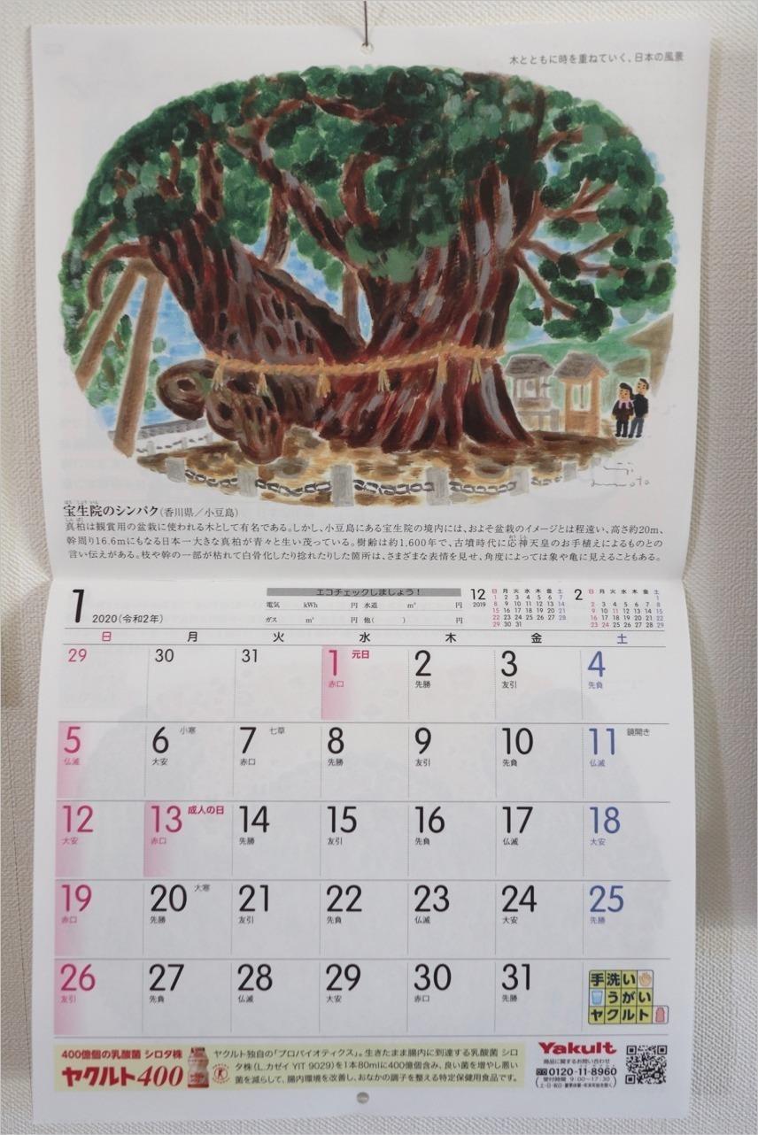 ヤクルトカレンダー2020年1月_c0202706_17405649.jpg