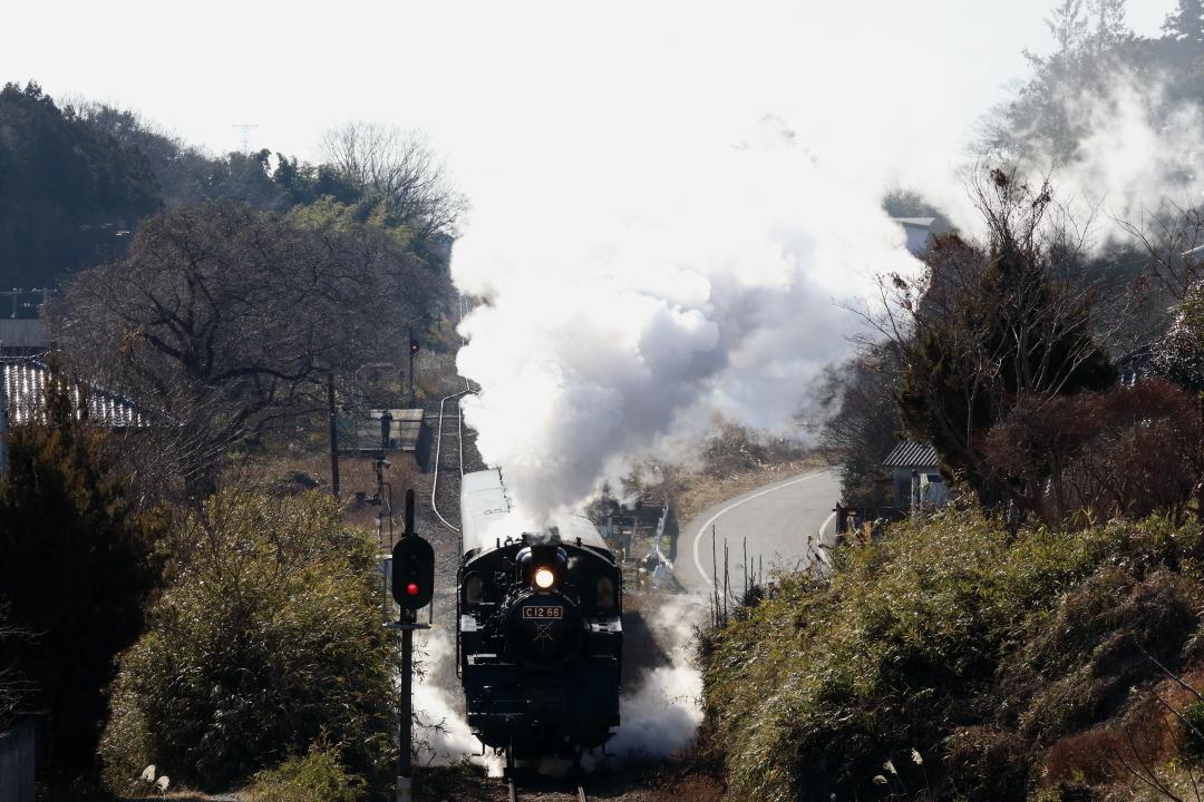 白い煙が迫る - 2020年冬・真岡鉄道 -_b0190710_22113528.jpg
