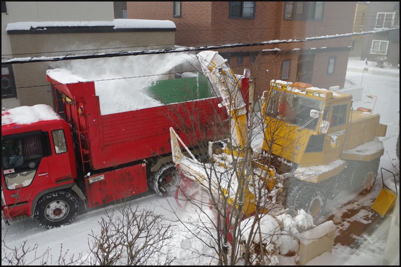 札幌が道内一の降雪34cm_b0019313_16544605.jpg