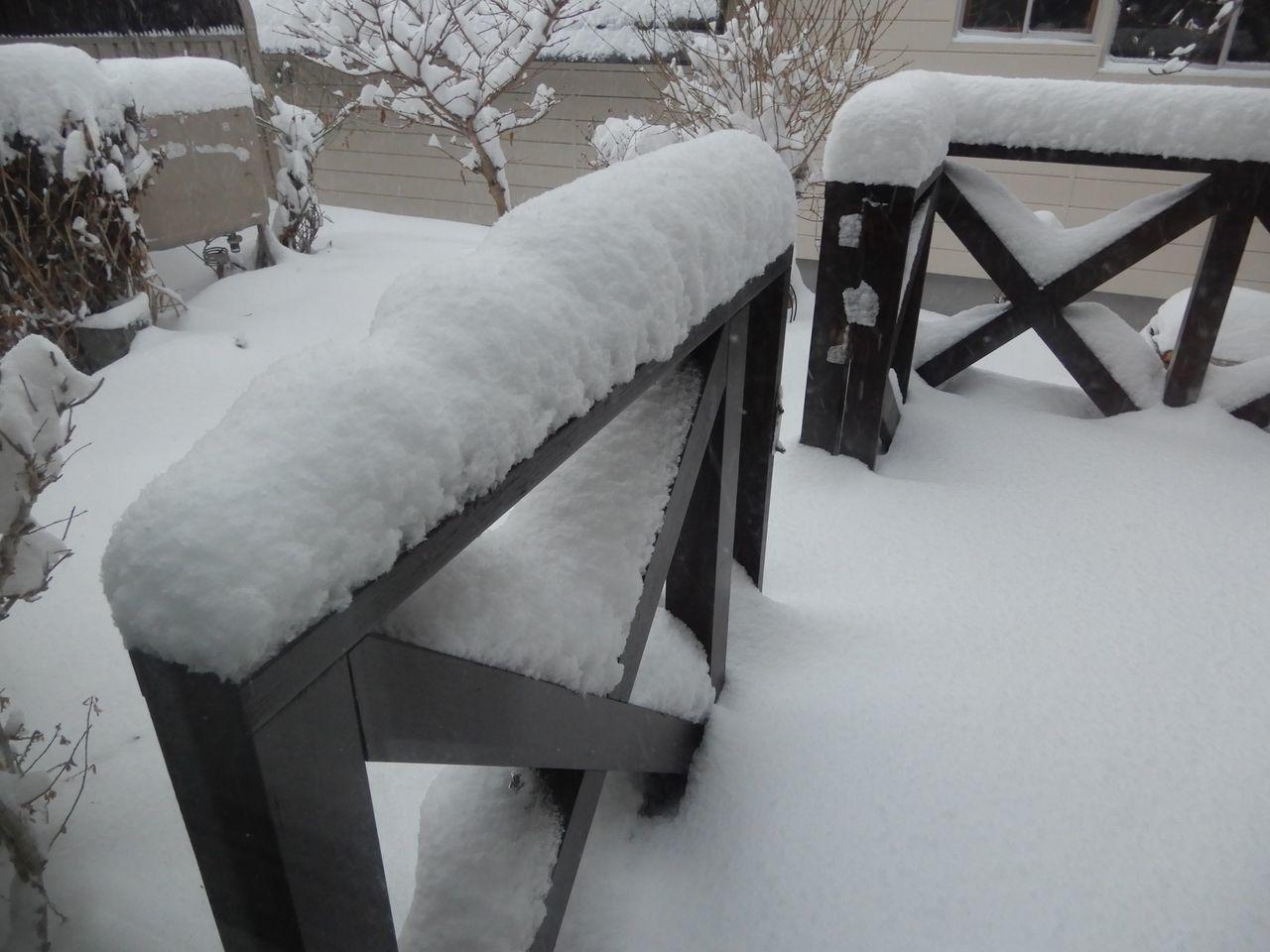 「ドカ雪」降りました_c0025115_21312766.jpg