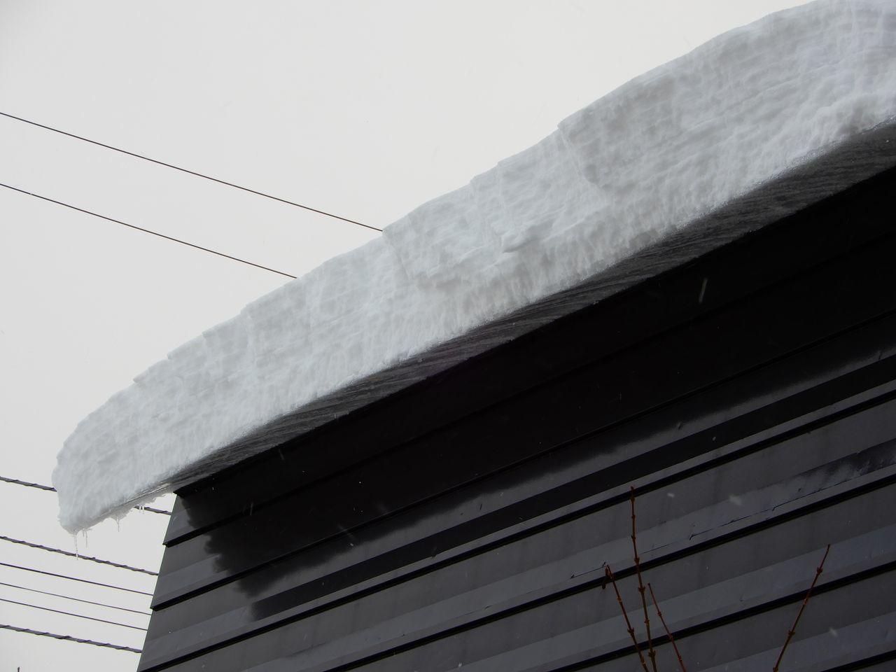 「ドカ雪」降りました_c0025115_21370613.jpg