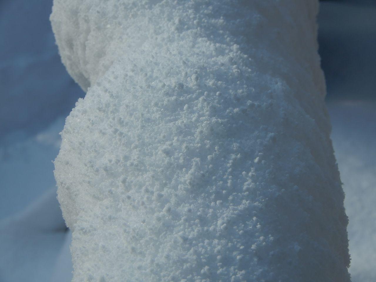 「ドカ雪」降りました_c0025115_21451257.jpg