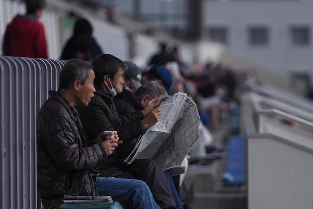 コンバットマーチ (阪神競馬場)_d0358718_19330328.jpg