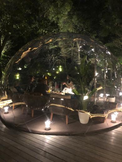 ウィンタードームby フォーシーズンズホテル京都 _f0215324_14134407.jpg