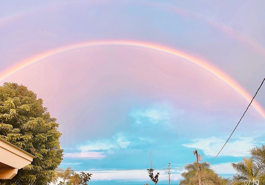 ハワイ島のメリマンズはやっぱり好き💓_c0187025_11090240.jpg