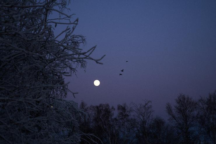 Yellowknife(6cut) evening_e0342136_19125784.jpg