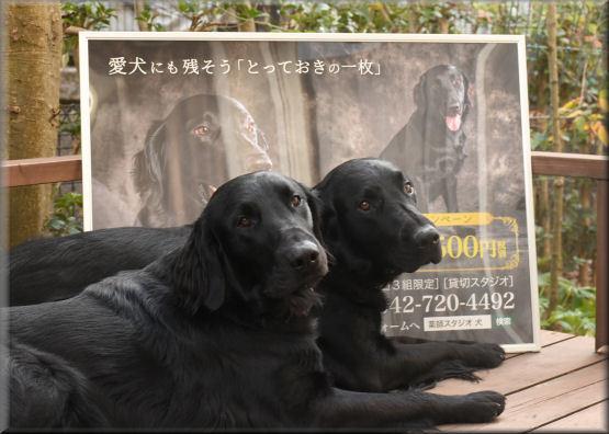 ポスターと記念撮影 _f0363141_07332691.jpg