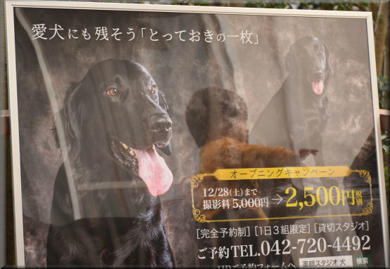 ポスターと記念撮影 _f0363141_07352392.jpg