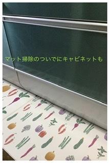 野菜の冷凍保存 & ホームパーティ & お掃除計画_a0084343_13343492.jpeg