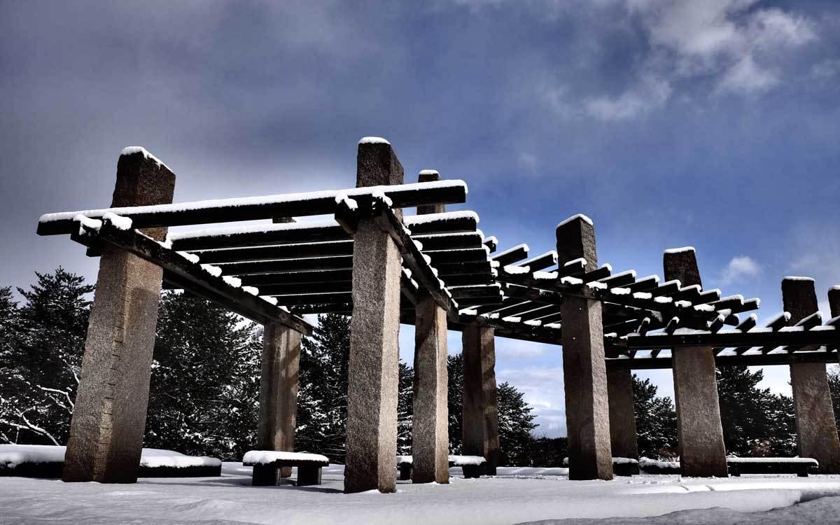 冬の公園散歩_e0220159_13583341.jpg