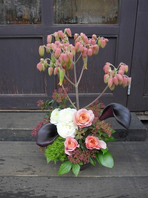花修行~「鮨 波やし」さんの2020年1月のお花~_f0232060_16152267.jpg
