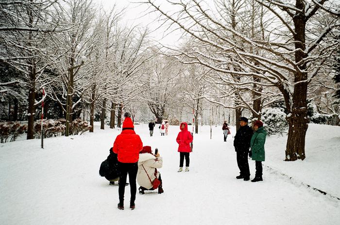 中島公園の雪景色_c0182775_17184258.jpg