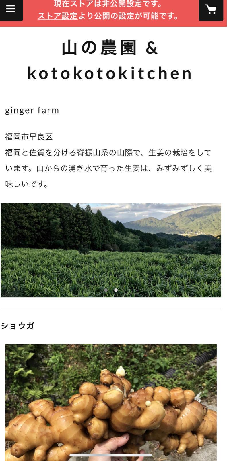 MY STORE_b0220289_00140296.jpg