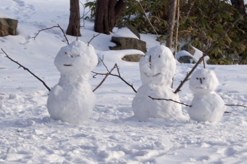 雪景色_d0162994_10290887.jpg